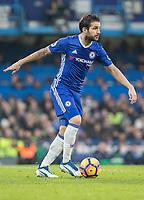 Football - 2016 / 2017 Premier League - Chelsea vs. Stoke City <br /> <br /> Cesc Fabregas of Chelsea at Stamford Bridge.<br /> <br /> COLORSPORT/DANIEL BEARHAM