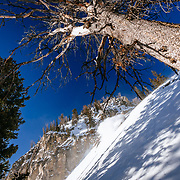 Andrew Whiteford skis powder in the Teton backcountry near Jackson Hole Mountain Resort in Teton Village, Wyoming.