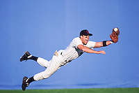Outfielder making the catch --- Image by © Jim Cummins/CORBIS
