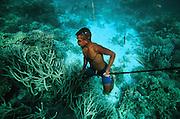 Spearfishing, Diver, Kitava Island, Trobiand Islands, Papua New Guinea