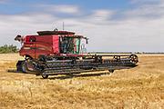 Case 7240 combine harvester in field after harveting