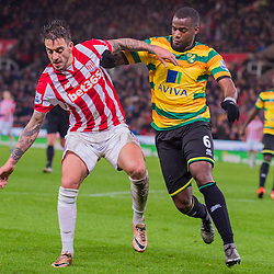 Stoke v Norwich | Premier League | 13 January 2016