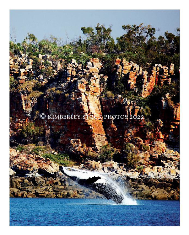 "Tear Sheet - image: Annabelle Sandes, ""The Kimberley, Australia's Last Great Wilderness"" by Vicki Lawrie, UWA Press"