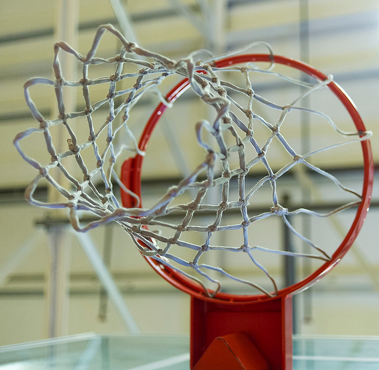 Basket <br /> <br /> <br /> Shoot by Joakim Ahlstrom, Sport Shooter Academy