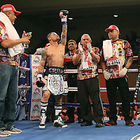 "Orlando ""El Fenomeno""  Cruz raises his arm during introductions prior to his match against Gabino ""Flash"" Cota during their Boxeo Telemundo WBO/NABO Super Featherweight bout on Friday, October 9, 2015 at the Kissimmee Civic Center in Kissimmee, Florida. Cruz, who is from Puerto Rico, is the first ever openly gay boxer  in the history of the sport and won the bout by unanimous decision.  (Alex Menendez via AP)"