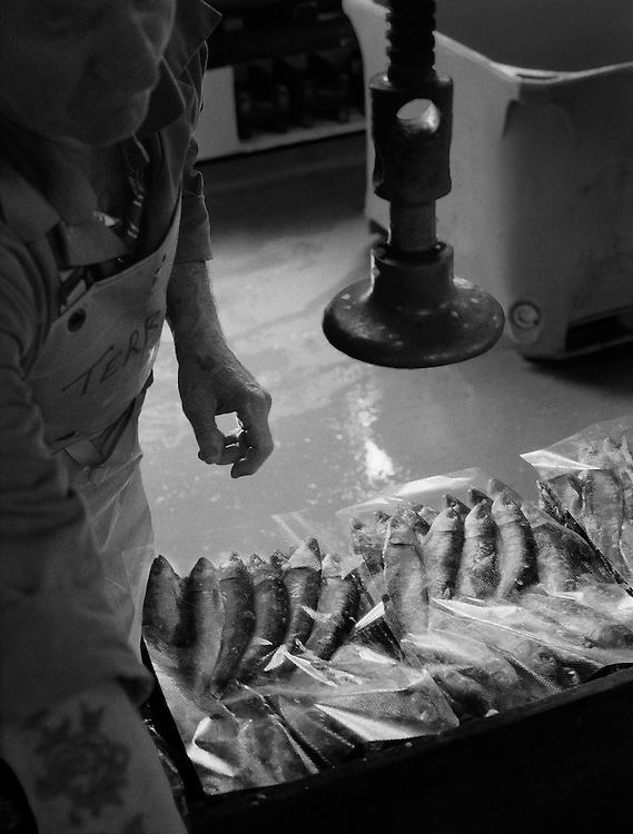 The Pilchard Works.<br /> Packing the preserved, salted sardines. <br /> <br /> Salted pilchards have been exported from Cornwall to the continent since the 16th century and the 'Pilchard Works' in Newlyn has been selling this traditional product to the same Italian family since 1905. <br /> <br /> Since becoming a 'working museum' in 1995 it has won two national awards but on 28/10/05 it closed down due to a decline in the demand for this kind of presentation. <br /> <br /> The custom of pressing salted, whole-ungutted fish, with heads still attached into wooden containers has now been superseded by more modern packaging and freezing techniques. <br /> <br /> As the 'Pilchard Works' was the last establishment in the U.K. to employ these methods, what was once the mainstay of the Cornish fishing industry has now gone forever.