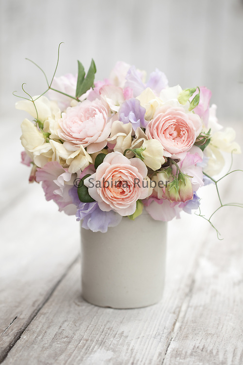 Flower arrangement with Lathyrus odoratus 'Mrs Collier', 'Charlie's Angel' and 'Anniversary' - sweet pea and  Rosa 'Queen of Sweden' - English rose
