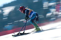 CORRADINI Melania, ITA, Giant Slalom, 2013 IPC Alpine Skiing World Championships, La Molina, Spain