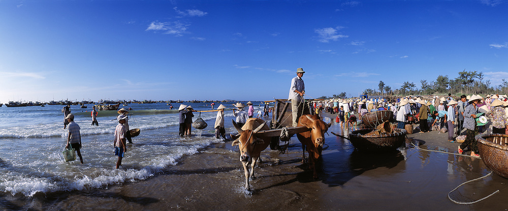 Morning fish market on the beach near Mui Ne, Vietnam