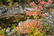 Enjoy a short walk along the Swift River in Rocky Gorge Scenic Area on Kancamagus Highway (NH Route 112), in White Mountain National Forest, New Hampshire, USA. The White Mountains (a range in the northern Appalachian Mountains) cover a quarter of the state of New Hampshire. Leaf peepers love the peak of autumn foliage around the first week of October.