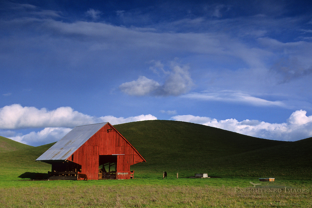 Barn and green pasture Tassajara region, Contra Costa County, CALIFORNIA