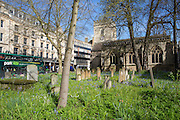 Cemetery outside Saint Mary Magdalen Anglican Church from Broad Street central Oxford. There are 45 graves in the burial ground. The church was dates back to the Saxon era.  (photo by Andrew Aitchison / In pictures via Getty Images)