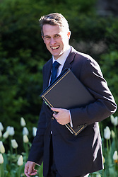 Downing Street, London, April 25th 2017. Chief Whip (Parliamentary Secretary to the Treasury) Gavin Williamson attends the weekly cabinet meeting at 10 Downing Street in London. Credit: ©Paul Davey
