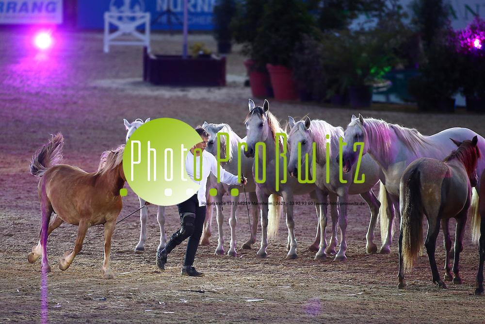 Mannheim. 18.07.15 Reitstadion. 100. CSIO. Pferde Gala im Reitstadion. Galaabend <br /> - Jean Francois Pignon.<br /> Bild: Markus Proßwitz 18JUL15 / masterpress (Bild ist honorarpflichtig)