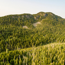 Greenlaw Mountain in Northwest Somerset, Maine. Boundary Mountains region. Site of proposed CMP transmission corridor.