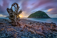 Oceania, New Zealand, Aotearoa, North Island, Rocky beach near New Plymouth