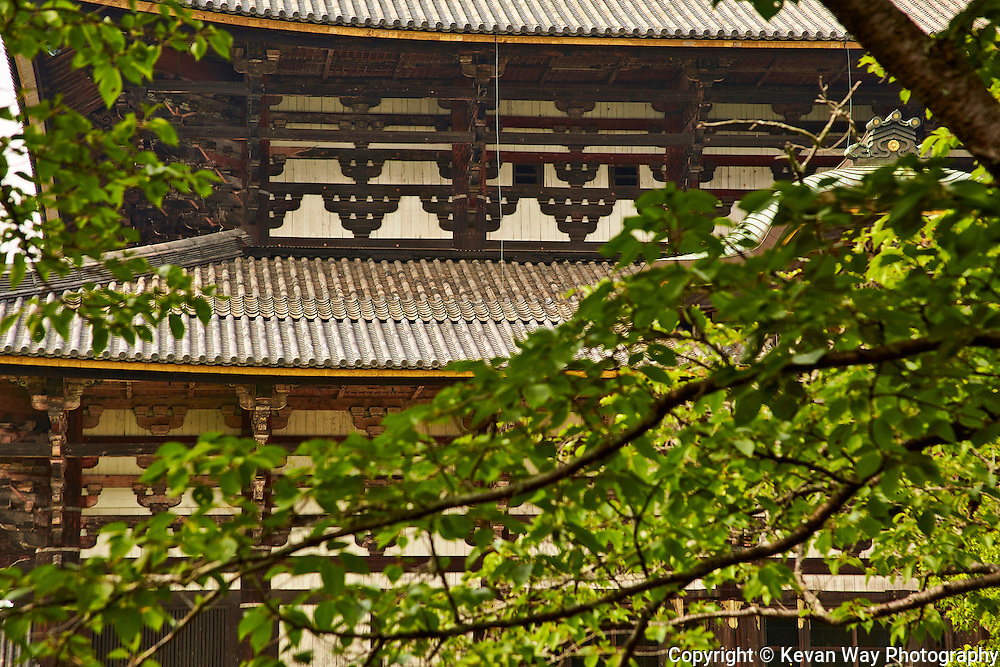 temple detail Kyoto Japan