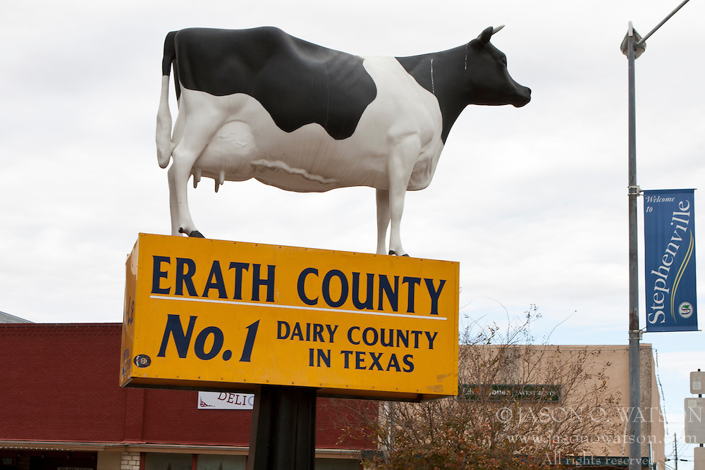 Cow on top of a sign designating Erath County as the top dairy producing county in Texas, Stephenville, Texas, United States of America