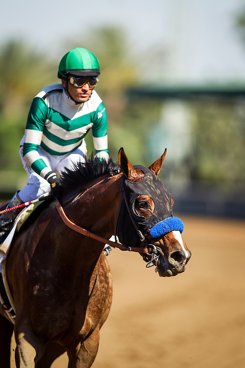 April 04 2015: One Lucky Dane with Rafael Bejarano at the Santa Anita Derby at Santa Anita Park in Arcadia CA. Alex Evers/ESW/CSM
