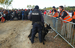 23.10.2015, Zagreb, CRO, Fl&uuml;chtlingskrise in der EU, im Bild 2000 Fl&uuml;chtlinge vom Campingplatz in Brezice mit Polizeibegleitung 10 km &uuml;ber Felder und entlang des Flusses Sava durch Slowenien // 2,000 refugees walk from the campsite in Brezice accompanied by Slovenian police. The road is 10 km long and leads across fields and along the bank of the Sava River. The line stretched for several kilometers, the elderly and parents with small children behind. According to estimates by the Slovenian Police about 6000 refugees went throughSlovenia Zagreb, Croatia on 2015/10/23. EXPA Pictures &copy; 2015, PhotoCredit: EXPA/ Pixsell/ Zeljko Lukunic<br /> <br /> *****ATTENTION - for AUT, SLO, SUI, SWE, ITA, FRA only*****