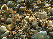 Beach Pebbles Underwater, Lake Michigan
