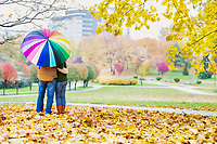 Rear view of man holding umbrella while enjoying the lovely view with his wife in park