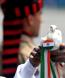 August 15, 2017 - Kolkata, West Bengal, India - White pigeon with Indian tri colors batch release during the Independence Day parade in Kolkata. West Bengal Chief Minister Mamata Banerjee host the Indian Tri color Flag and inspect guard of honors on the occasion of Independence Day on August 15, 2017 in Kolkata. (Credit Image: © Saikat Paul/Pacific Press via ZUMA Wire)
