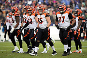 The Cincinnati Bengals offense breaks from the huddle after calling a play during the NFL week 11 regular season football game against the Baltimore Ravens on Sunday, Nov. 18, 2018 in Baltimore. The Ravens won the game 24-21. (©Paul Anthony Spinelli)