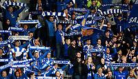 Fotball , 27. april 2019 , Eliteserien , Sarpsborg - Mjøndalen 1-1<br /> <br /> illustrasjon , fan , fans , publikum ,flagg , skjerf , sarpsborg<br /> Fossefallet – Vi er særpingær alle sammen
