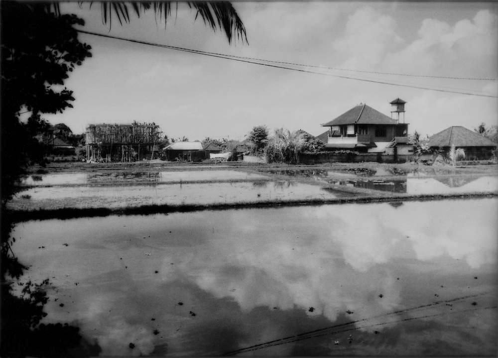 A new building (left) goes up along the already hemmed in rice paddies of Ubud, Bali, Indonesia.