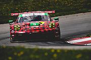 May 5, 2019: IMSA Weathertech Mid Ohio. #9 PFAFF Motorsports Porsche 911 GT3 R, GTD: Scott Hargrove, Zacharie Robichon, Lars Kern