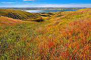 Diefenbaker Lake in autumn<br /> near Beechy<br /> Saskatchewan<br /> Canada