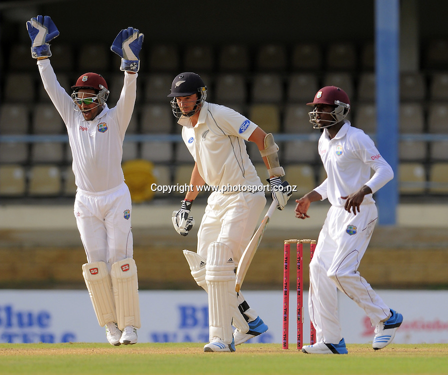 West Indies keeper Denesh Ramdin appeals for lbw against New Zealand batsman Tim Southee during day one of the Second Test West Indies v New Zealand at Queens Park Oval, Trinidad.<br /> Photo: Randy Brooks