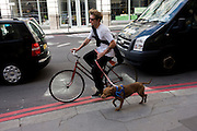 Cyclist precariously pedals with his running pet dog on lead in London street.