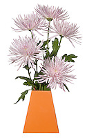 light purple flowers in an orange blumebox