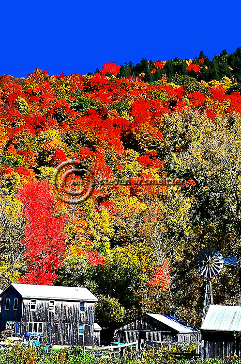 Berkshires Fall Foliage Tour