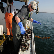 3/20/12 -- HARPSWELL SOUND, HARPSWELL, Maine.  Sternman Zach Drehobl of Harpswell's F/V Lorelei lays out a grapple to snag up ghost gear from the bottom on Tuesday morning. Photo © by Roger S. Duncan.