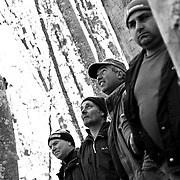 Italy, Basilicata- S. Francesco popular tree rite: everybody involved in the smal village Pedali di Viggianello  © 2012 Mama2