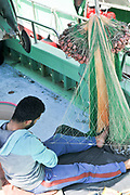fisherman fixes fishnets in Limassol, Cyprus