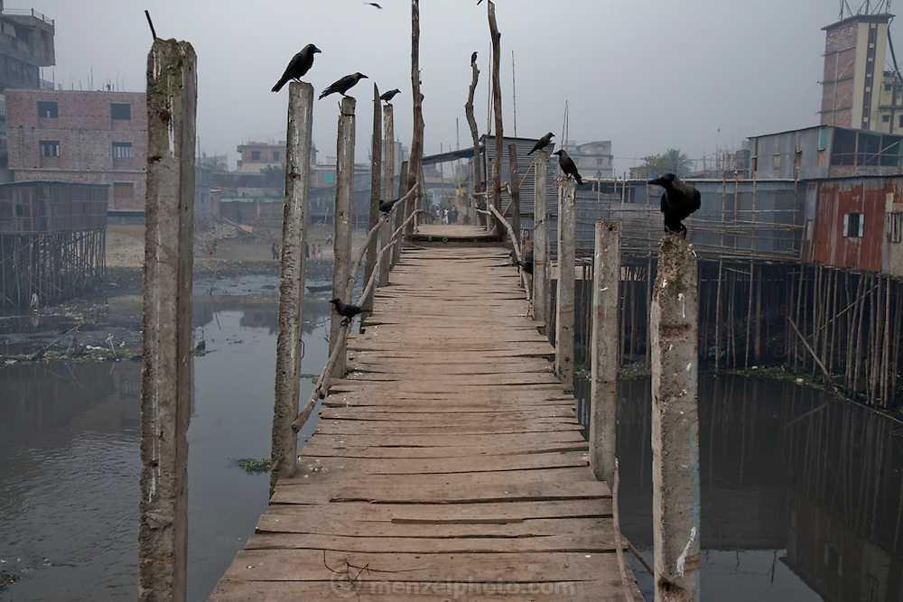 A footbridge straddles a tributary of the Biuriganga river near Ruma Akhter's home in the Chairman District of Dhaka, Bangladesh.  (Ruma Akhter is featured in the book What I Eat: Around the World in 80 Diets.)