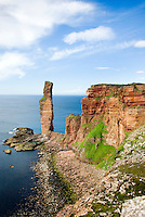 The Old Man Of Hoy a 450' tall sea stack on the Isle of Hoy Orkney Islands Scotland