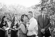 Gourley Wedding, ABQ