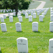 Tilt-shift photo of headstones at Arlington National Cemetery on a sunny day, with very narrow depth of field.