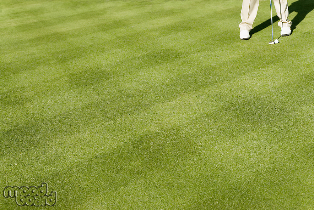 Golfer putting on putting green (low section)