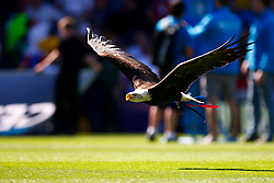 An eagle flys across Selhurst Park before kick off - Mandatory byline: Jason Brown/JMP - 07966386802 - 22/08/2015 - FOOTBALL - London - Selhurst Park - Crystal Palace v Aston Villa - Barclays Premier League