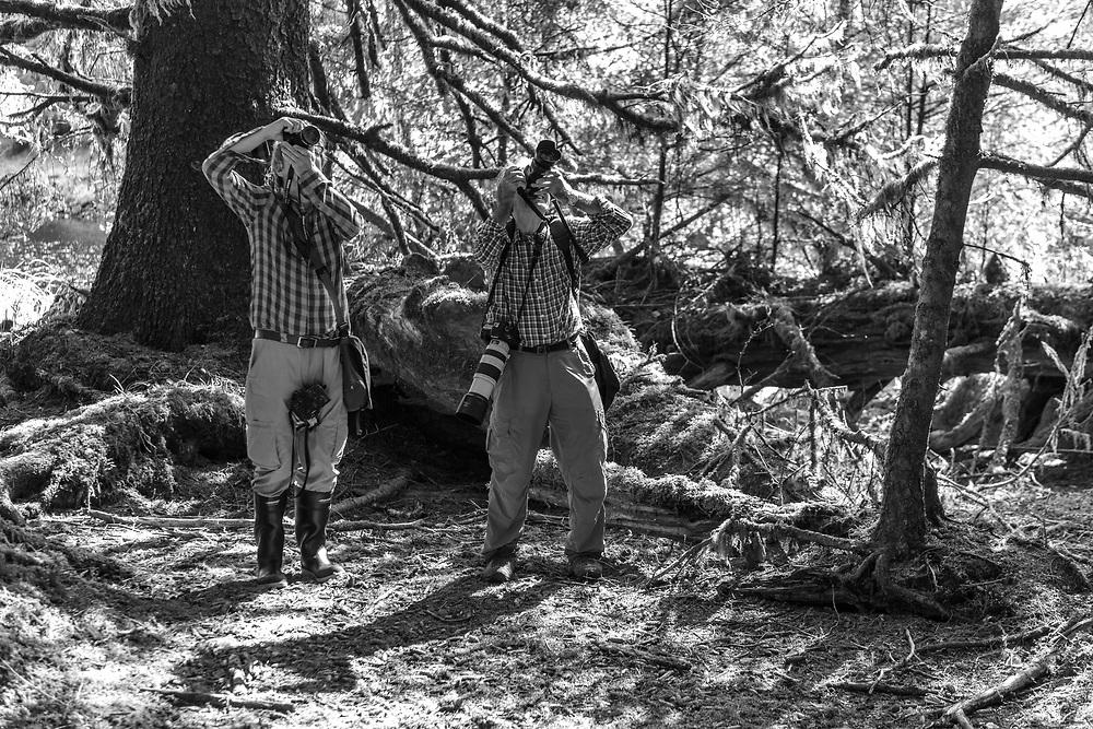 North America, Canada, Canadian, British Columbia, Queen Charlotte Islands, West Coast, Haida Gwaii, Gwaii Haanas, National Park Reserve, Abandoned Logging Camp