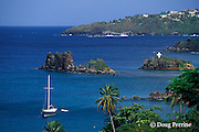 south shore, Saint Vincent,  St. Vincent & the Grenadines, West Indies ( Eastern Caribbean Sea )