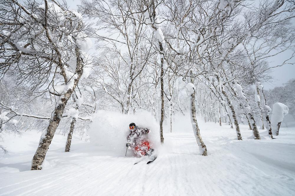 Charlie Cohn shreds the trees on Mt Isola, Rusutsu Resort, Japan.