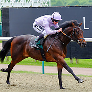 Lingfield 17th May