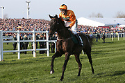 Tea For Two and jockey Lizzie Kelly head for the start of the 5:15pm The Randox Health Grand National Steeple Chase (Grade 3) 4m 2f during the Grand National Meeting at Aintree, Liverpool, United Kingdom on 6 April 2019.